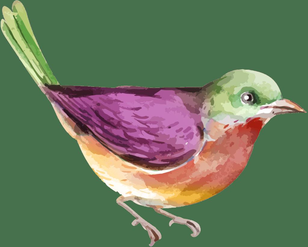 vogel icon