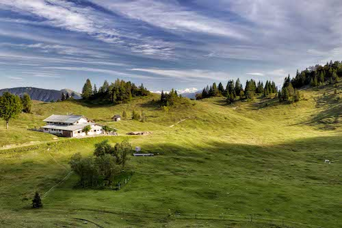 Sonnenschein mit hellem Himmel auf einer Wiese in Tirol mit Bergblick
